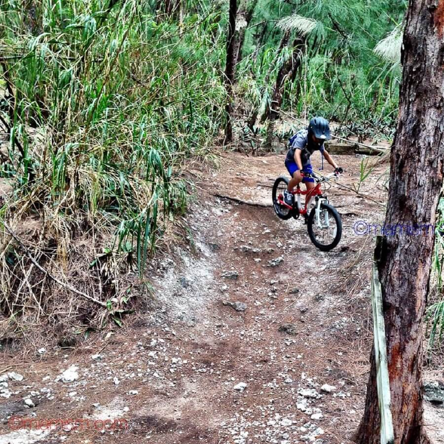 child cycling around Oleta River State Park forest trail - Flickr image