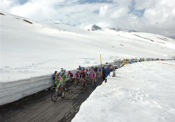 The bunch ascends the gavia pass in 2010