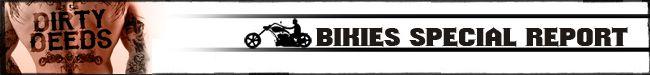 Bikies Special 650 banner