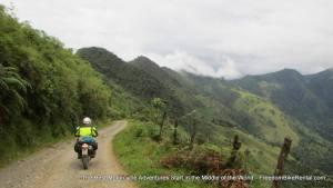 ~ Freedom Bike Rentals