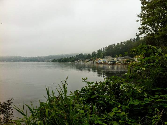 A foggy morning on the north part of Lake Washington. You can see the docks of the expensive houses on the lake.