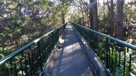 Smoothy Park - Wolstonecraft