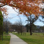 Bowral Trails