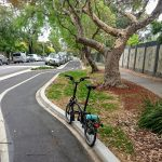 Wilson St Cycleway