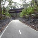 Fernleigh Rail Trail - standard surface