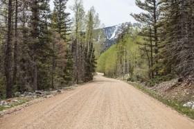 La Plata Canyon Trail