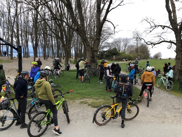 A group of cyclists amongst some tall trees
