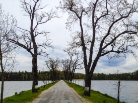 Between two ponds, Vyšehrad on left, Stolec on right