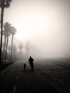 Darren Graves offers this beautifully evocative photo of the Venice bike path from this morning's commute.