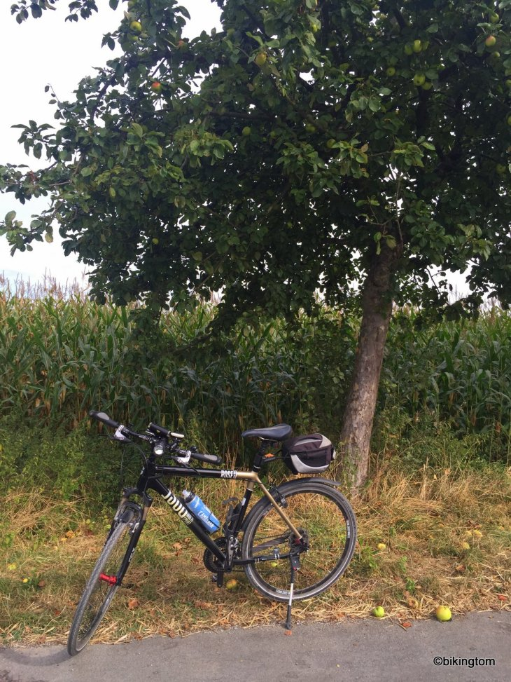 Fahrradtour bikingtom Apfelernte Äpfel Verpflegung