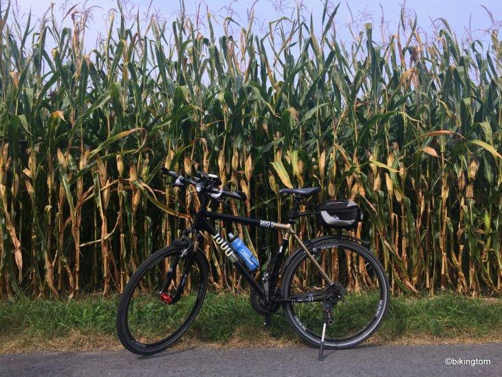 Fahrradtour bikingtom Mais Ernte
