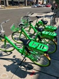 Radfahren USA,Cycling USA,bikingtom,Seattle