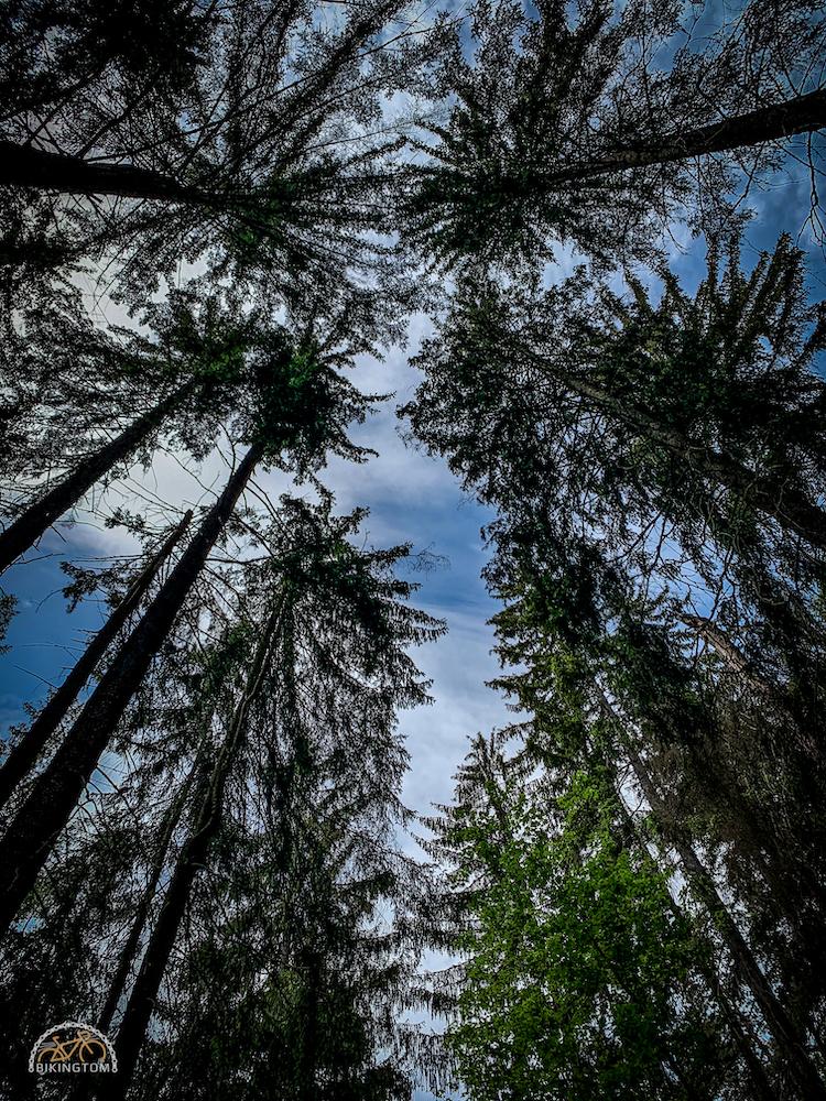 Erzgebirge,Radfahren,Sachsen,Gravelbike,Rennrad,Urlaub,bikingtom