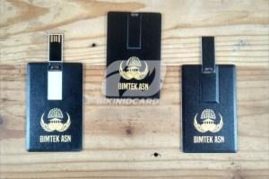 USB Promosi