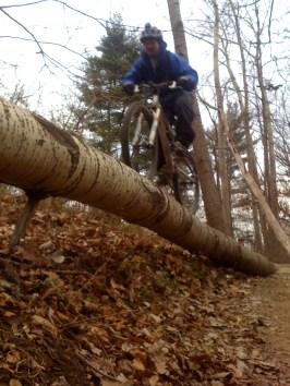 Log ride by Wally