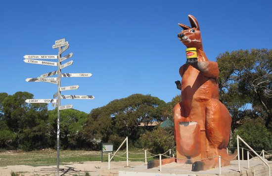 Big Kangaroo Border Village SA