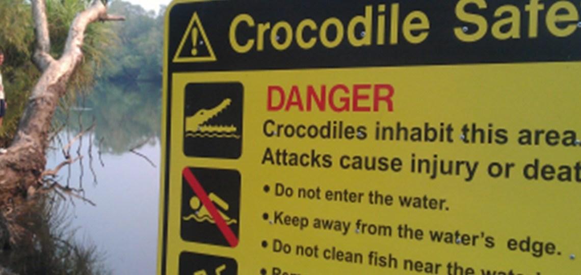 Krokodiller og slanger