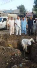 @ibrohi31 Info Secretary PS128 Yousaf Jadoon Inspecting the sewerage cleaning work along with PPP workers #Karachi 3