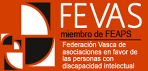 """FEVAS reclama ayudas para las personas con discapacidad: """"Si falla la familia, falla todo"""""""