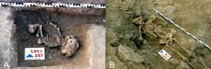 Restos óseos humanos de un bebé (A) y un individuo adulto (B) encontrados en el poblado de La Hoya.