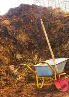 Dünger aus Pferdemist abzugeben, Biogas, Dung, Biomasse ...