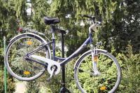 damenrad fahrrad - neu und gebraucht kaufen bei dhd24.com