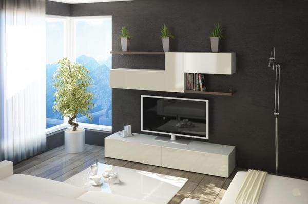 Wohnzimmerschrank modernkaufen bei der Firma Daniel  Lubowski GbR in Bad Rappenau