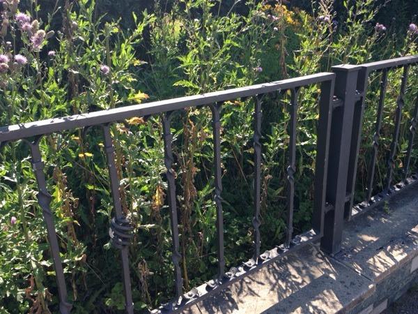 bambus sichtschutz massiv in gewellter art der massive sichtschutz,