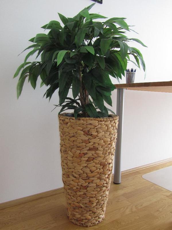 Kunstpflanzen gebraucht kaufen Nur 2 St bis 60 gnstiger