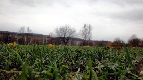 Ganz schön leer im Herbst, der Alaunplatz.