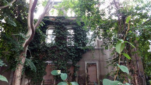 Ruine auf der Glacisstraße