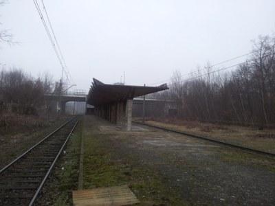 Foto: Stillgelegter S-Bahnhof Stettin-Braunsfelde (Pogodno) - bald wieder in Betrieb? Foto Autor 2013.