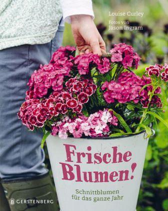 Frische Blumen von Louise Curley  Buch  bcherde