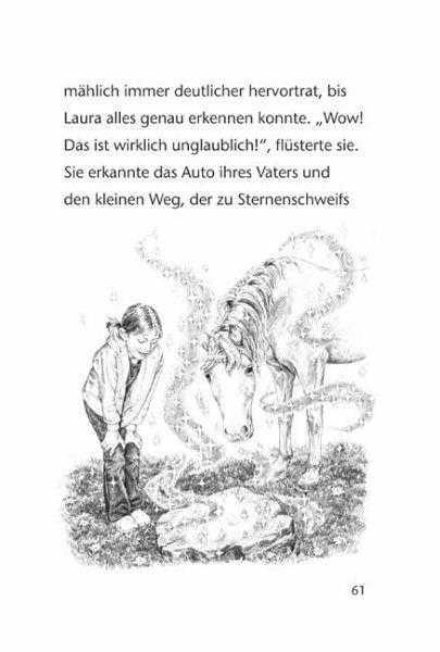 Der steinerne Spiegel / Sternenschweif Bd.3 von Linda