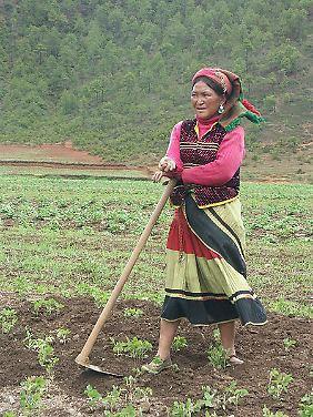 Frauen und Männer haben ihre jeweils eigenen Aktionssphären. Hier eine Mosuo-Frau bei der Arbeit auf dem Acker.