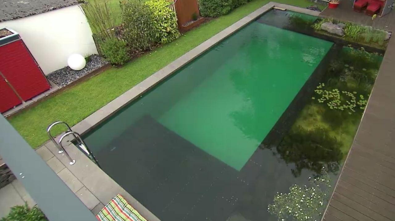 N-Tv Ratgeber: Schwimmteich Als Alternative Zum Pool - N-Tv.De
