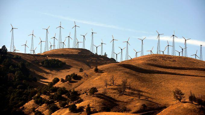 Windräder sind in Kalifornien kein seltenes Bild.