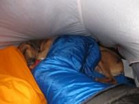 Drei Bilderbummler- ein Zelt. Geht doch :-)