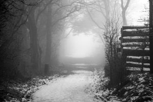Winterwonderland in Schleswig-Holstein