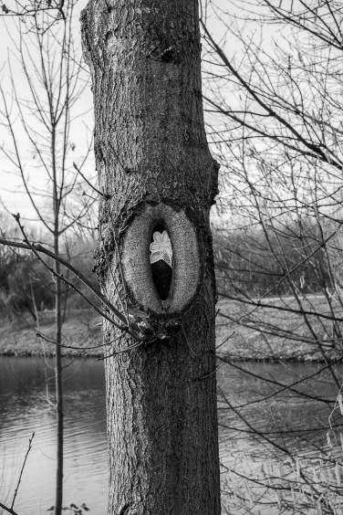 Saurons Auge