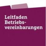 BV-Leitfaden