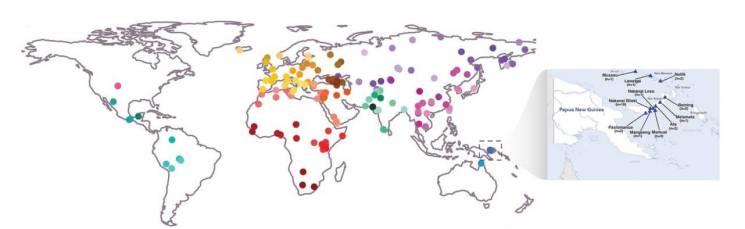 melanezya-bireylerinde-denisovan-neandartel-izleri1-bilimfilicom