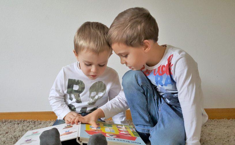 bilingual siblings 5 factors