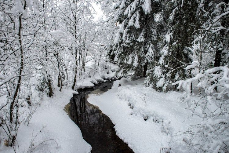 Bekk i Oslomarka