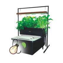 Aquaponic Fish Plant Family Unit