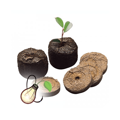Jiffy Coir Pellets Box (1155Pc)