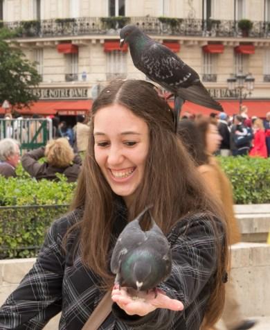 Feeding pigeons - WHY!!