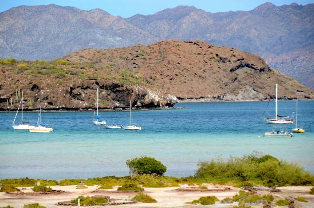 Baja Bay