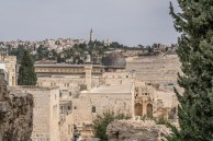 mount-olives-jerusalem