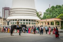 traffic-police-horse-colombo-sri-lanka